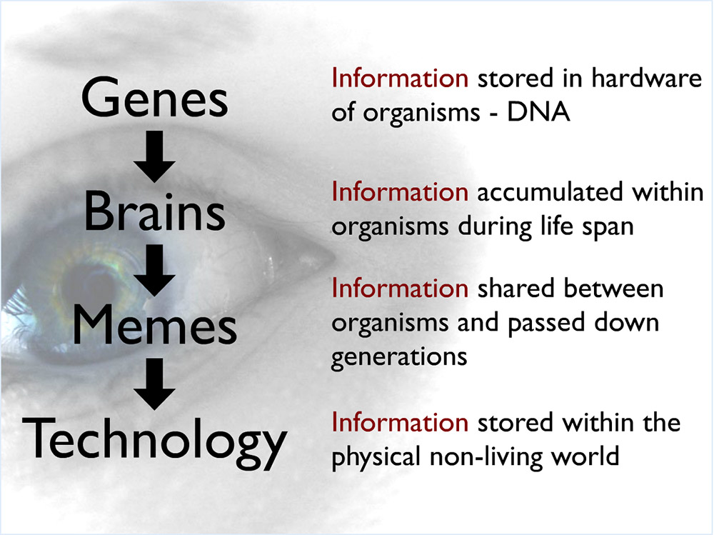 A diagram showing the links from genes to brains to memes to technology