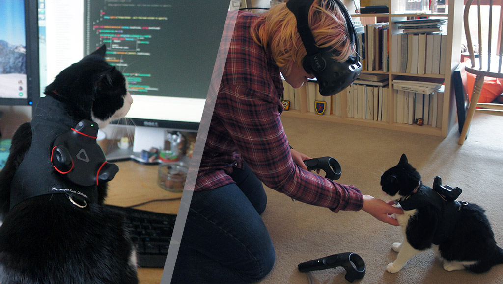 A cat wearing the cat tracker and Katie interacting with the cat while in VR