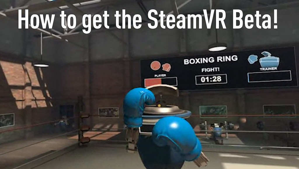 The SteamVR boxing ring