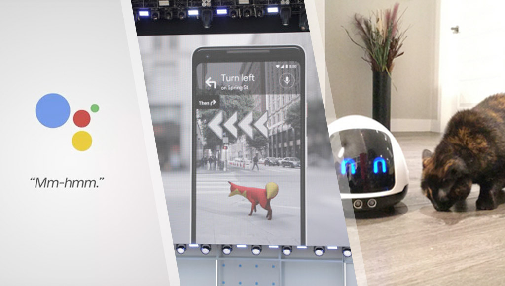 Google's Duplex AI, Google Maps AR and a robot companion for pets