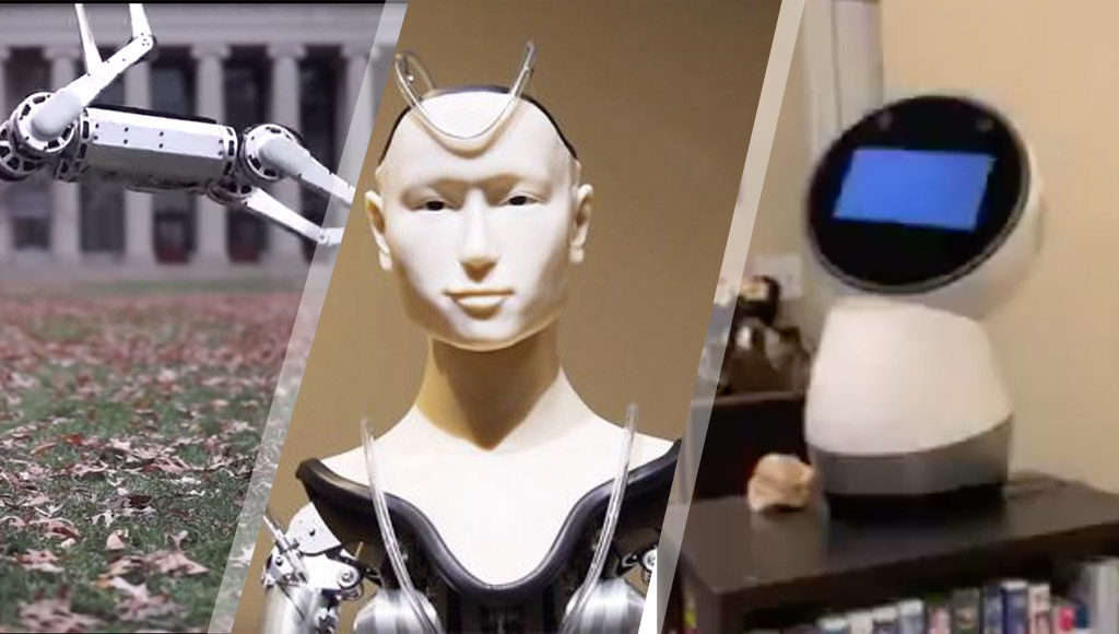 A backflipping robot, a monk robot and Jibo, a robot nearing the end of its life